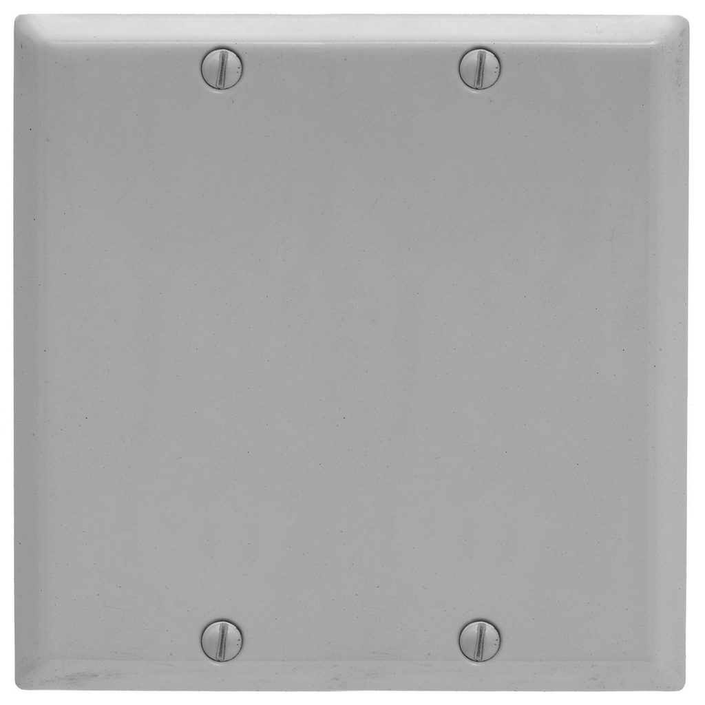 HWDK SP24BG PLATE, 2-G BLANK, BOX M