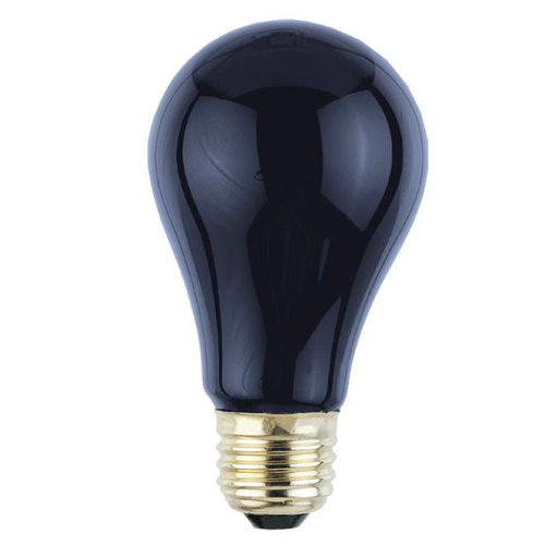 75 Watt A19 Incandescent Light Bulb