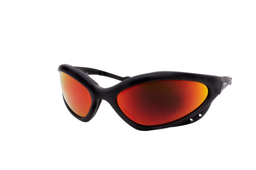 Glasses,Shade 5/Black Frame