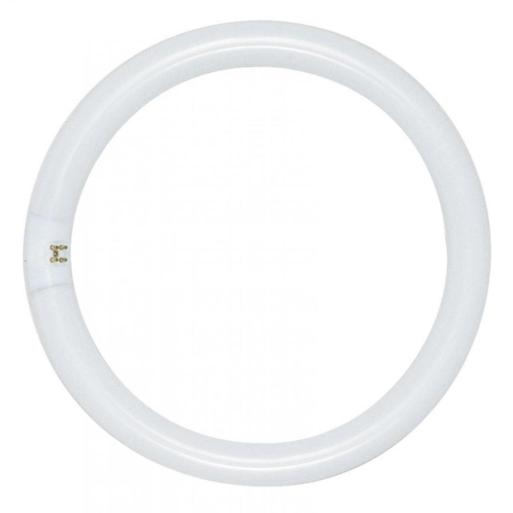 SATCO S6500 22 W 62 CRI 4100 K 1120 Lumen G10Q 4-Pin Base T9 Circline Fluorescent Lamp