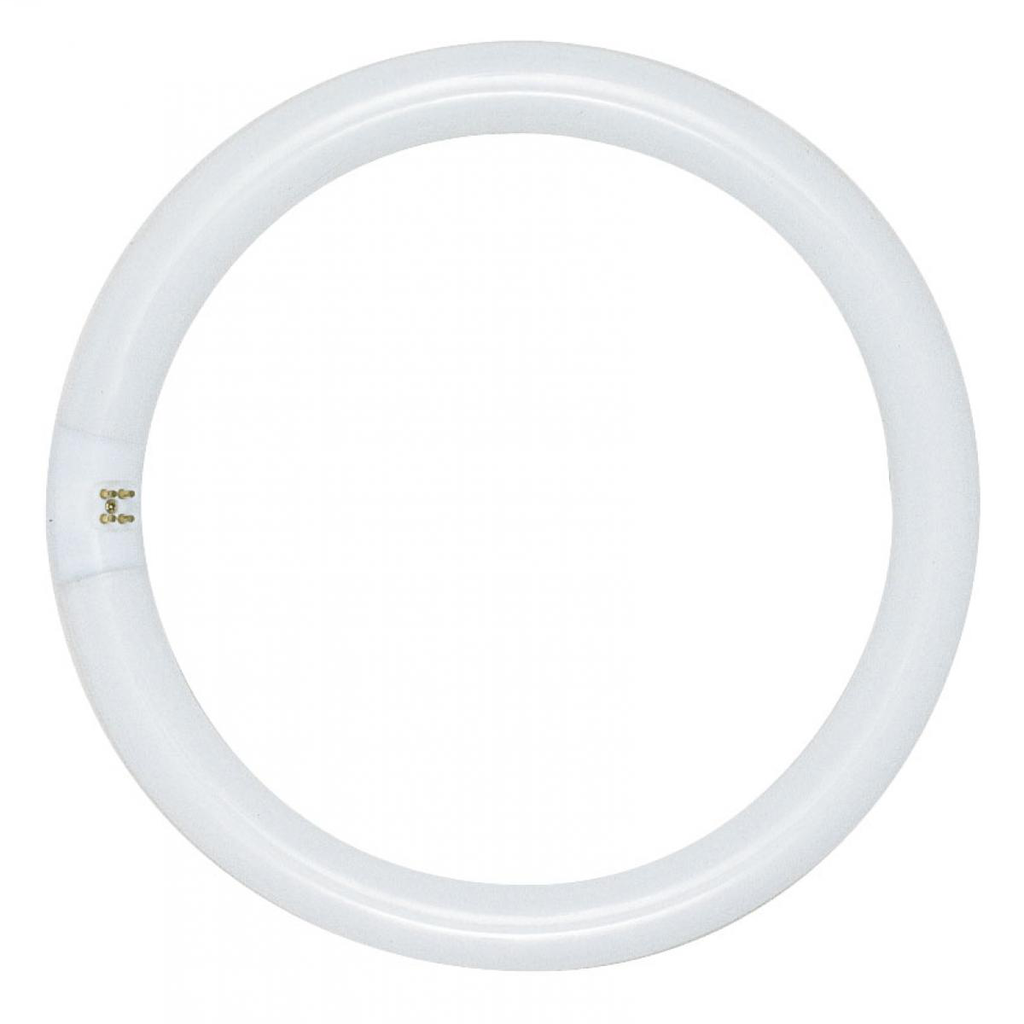 SATCO S6503 32 W 62 CRI 4100 K 1930 Lumen G10Q 4-Pin Base T9 Circline Fluorescent Lamp