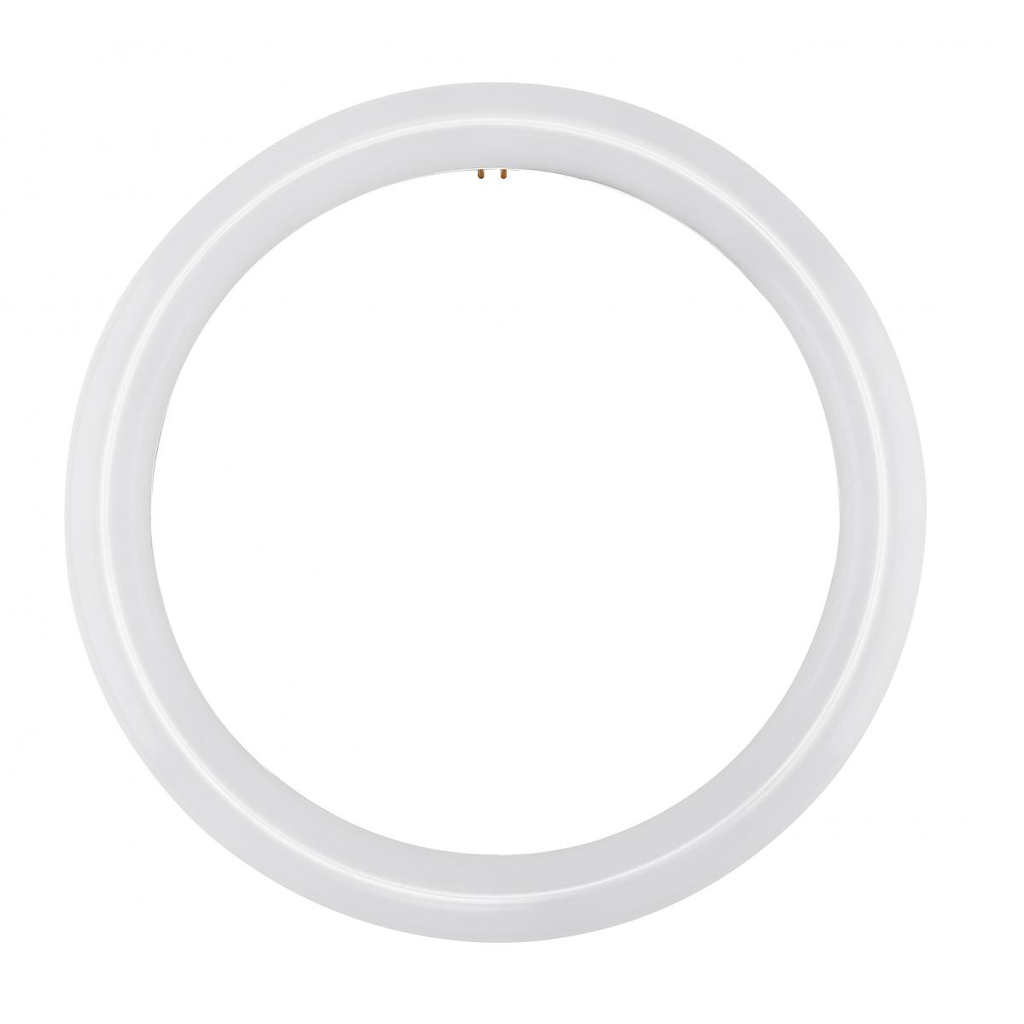 SATCO S16504 FC12T9/LED/CIR/840/BP